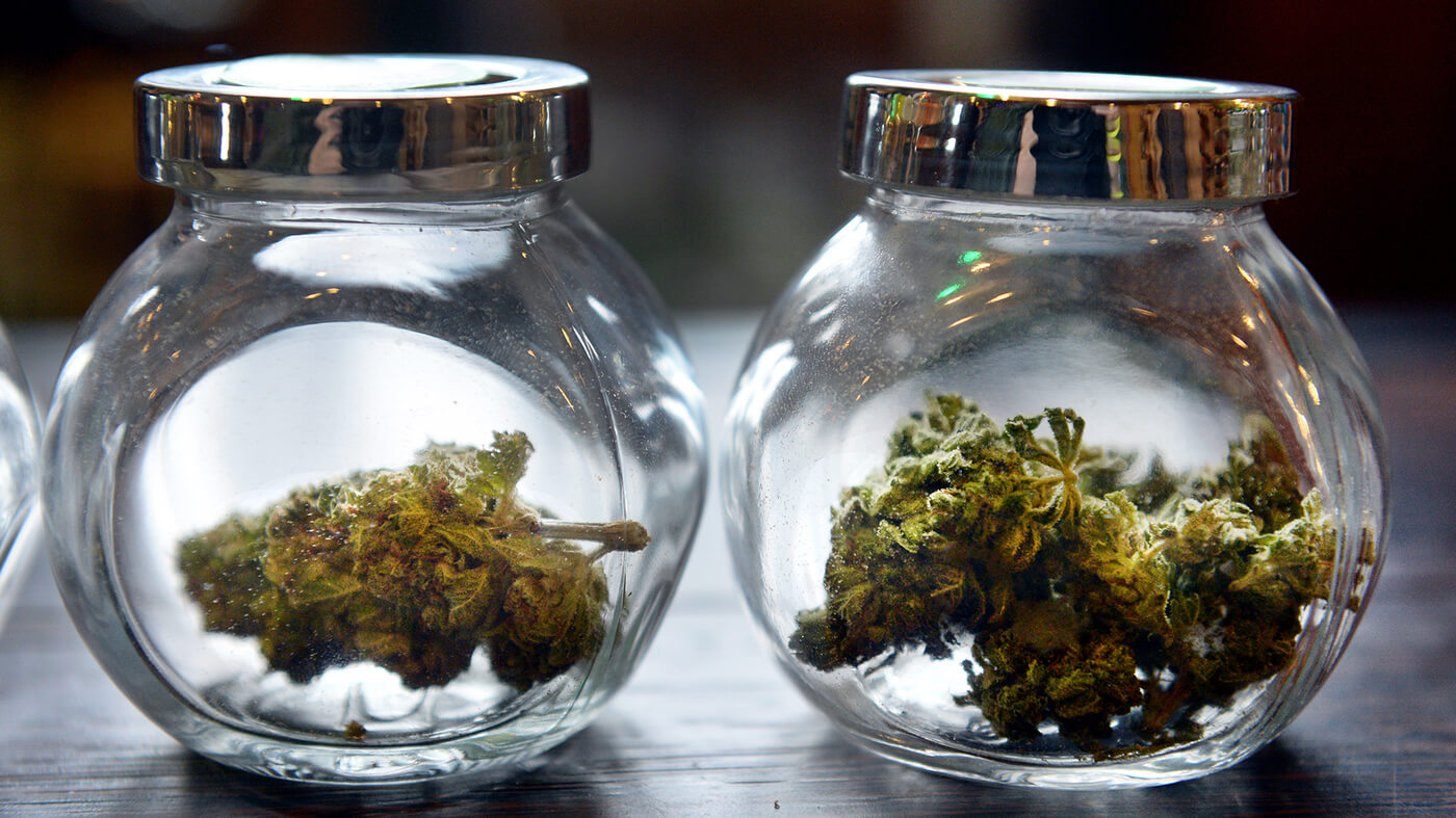 Cannabis Different Variations