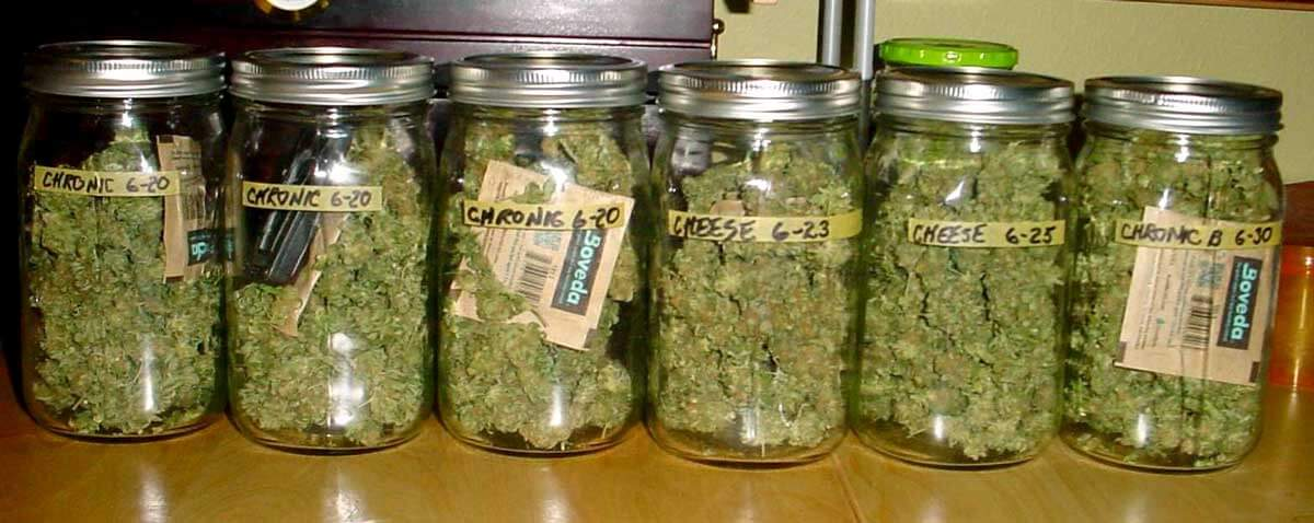 How To Store Your Cannabis So It's Always Fresh