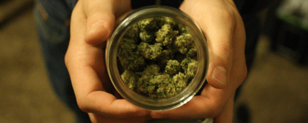 How to cure your marijuana with canning jars